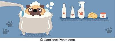 vetorial, cute, diferente, pug, coloridos, engraçado, andar, cão, situações, pugs, alimentação, ilustrações, cuidado