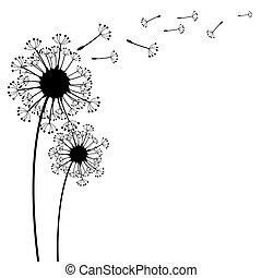 vetorial, dandelion, ligado, um, vento, perde, a,...