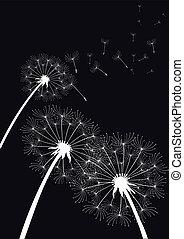 vetorial, dandelions, pretas