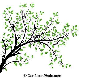 vetorial, decorativo, ramo, silueta