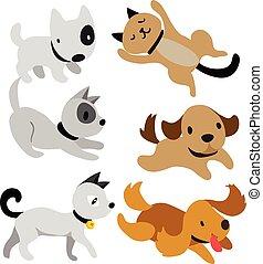 vetorial, desenho, cão, cobrança, gato
