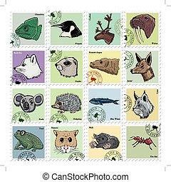 vetorial, diferente, jogo, animais, selos