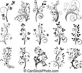 vetorial, elementos florais, para, desenho