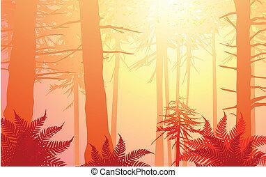 vetorial, encantado, floresta, em, morno, cores