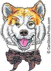 vetorial, engraçado, caricatura, hipster, cão, akita, inu