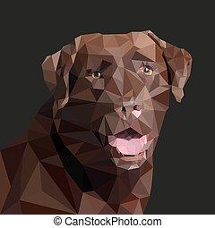 vetorial, estilo, marrom, labrador, low-poly., ilustração