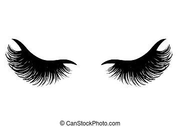 vetorial, eyelashes., bonito, testas, chicotadas, illustration.