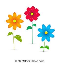vetorial, flores, ilustração, isolado, branco, fundo