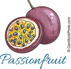 vetorial, fruta, paixão, cor, ícone, esboço