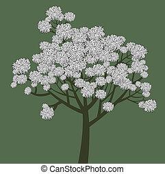vetorial, gráfico, desenho, de, jovem, floresça árvore