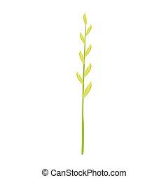vetorial, grama verde, ilustração, caule