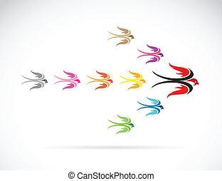 vetorial, grupo, de, coloridos, andorinha, birds., trabalho equipe, conceito