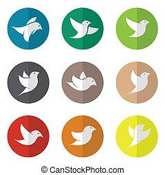 vetorial, grupo, de, pássaro, em, a, círculo