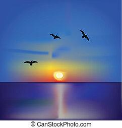 vetorial, ilustração, de, a, pôr do sol, ligado, mar