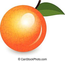 vetorial, ilustração, de, brilhante, laranja
