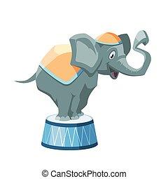 vetorial, ilustração, de, elefante circo