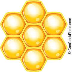 vetorial, ilustração, de, favo mel