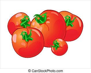 vetorial, ilustração, de, tomates