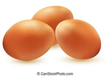 vetorial, ilustração, de, três, ovos