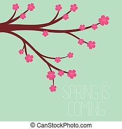 vetorial, ilustração, de, um, estação mola, em, apartamento, estilo, -, flores cereja
