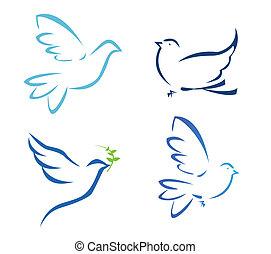 vetorial, ilustração, de, voando, pomba