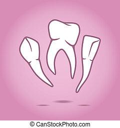 vetorial, ilustração, dentes