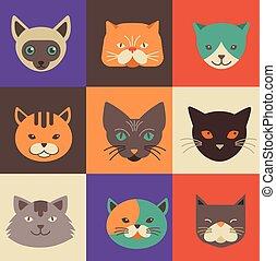 vetorial, ilustrações, gato, cobrança, ícones