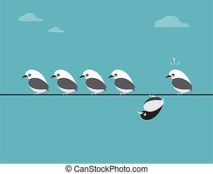 vetorial, imagem, de, pássaros, group., diferente, conceitos