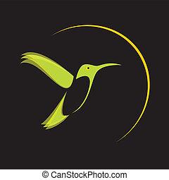 vetorial, imagem, de, um, fummingbird, .