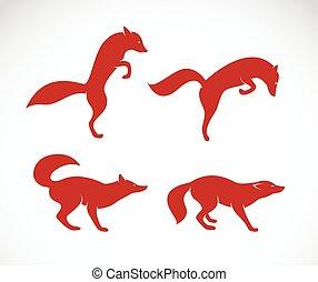vetorial, imagem, de, um, raposa, branco, fundo