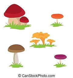 vetorial, isolado, fundo, cogumelos brancos, ilustração, objeto, jogo, diferente