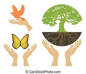 vetorial, jogo, hands., natureza, ícones