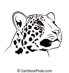 vetorial, leopardo