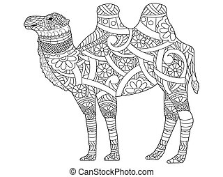 vetorial, livro, coloração, adultos, camelo