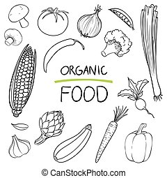 vetorial, mão, desenhado, legumes