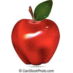 vetorial, maçã, fruta, vermelho