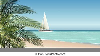 vetorial, mar, espaço ilustração