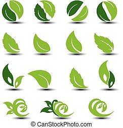 vetorial, natural, arredondado, símbolos, com, leaf., bio, elements.