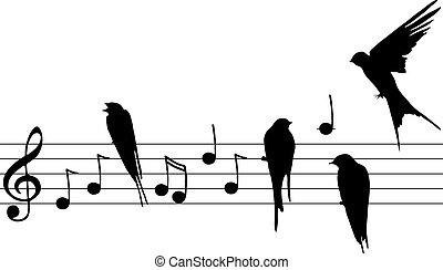 vetorial, notas música, e, pássaros