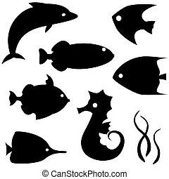 vetorial, peixe, 2, jogo, silhuetas