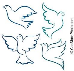 vetorial, pomba, voando, silueta, ilustração