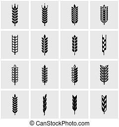 vetorial, pretas, trigo, orelha, ícone, jogo