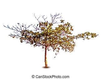vetorial, primavera, árvore