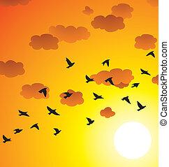 vetorial, rebanho, de, voando, pássaros, nuvens, e, sol brilhante