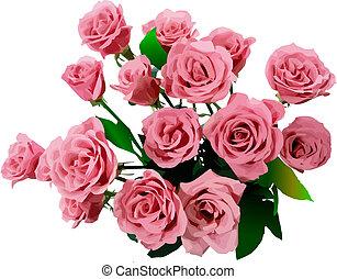 vetorial, roses., ilustração, grupo