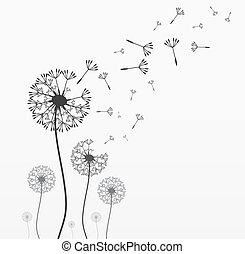 vetorial, sete, dandelions