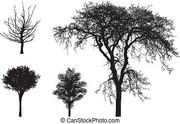 vetorial, silhuetas, de, árvores
