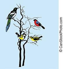 vetorial, silueta, de, a, pássaros, ligado, árvore