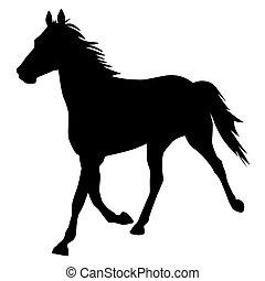 vetorial, silueta, de, cavalo