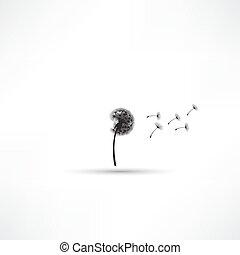 vetorial, soprando, dandelion